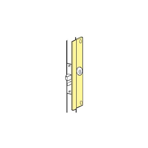 """Polished Brass 7 3//4/"""" Deadbolt Security Latch Strike 1016-PB Hickory"""